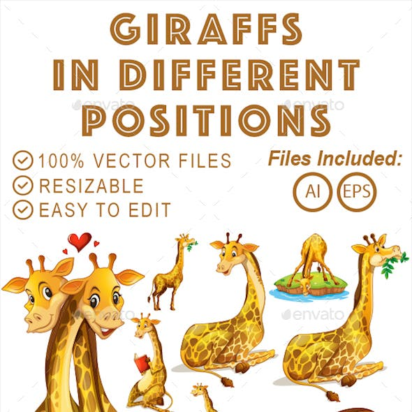 Giraffes in Different Positions