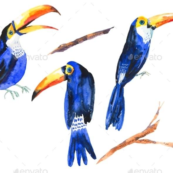Watercolor Set of Tropical Birds Toucans