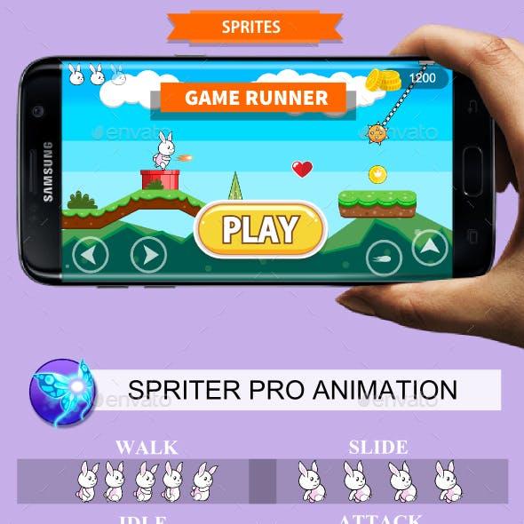 Platform Game Asset Rabbit