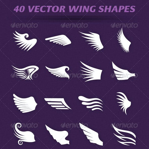 40 Wing Shapes