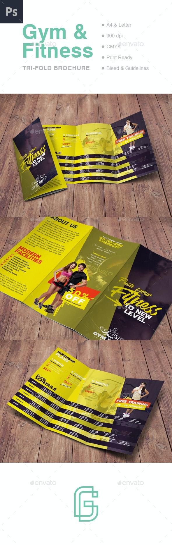 Gym Tri-Fold Brochure - Informational Brochures
