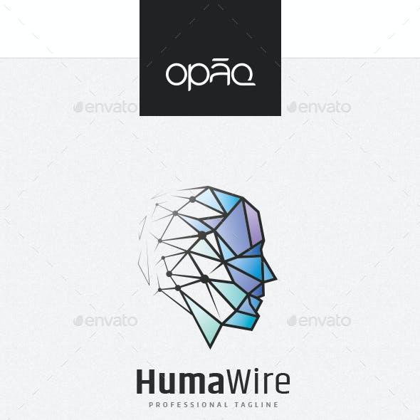 Human Wireframe Triangulation Logo