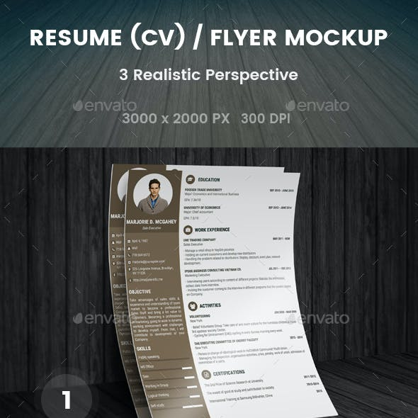 Realistic Flyer/Poster/CV Mockup