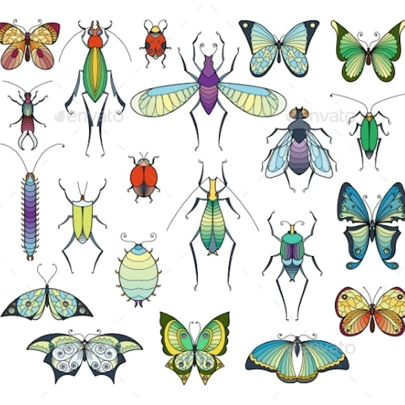 Colored Insects Isolate on White.