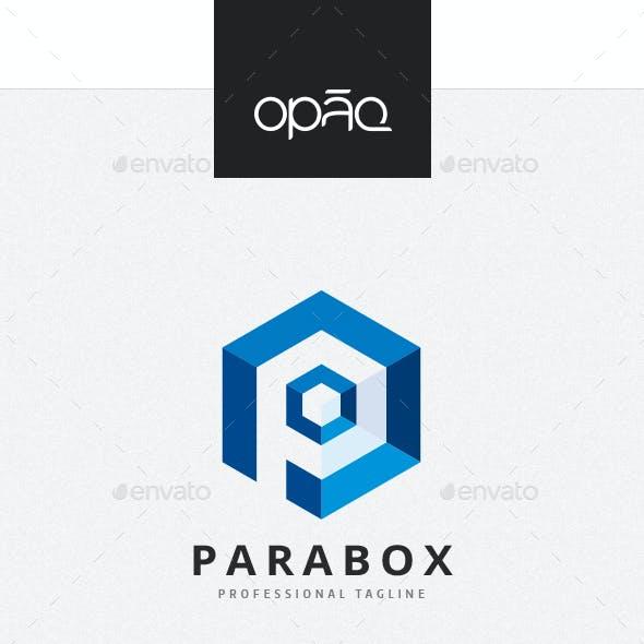 Hexagonal P Letter Box Logo