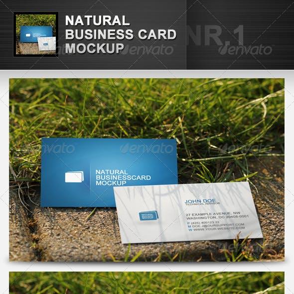 Natural Business Card Mockup 1