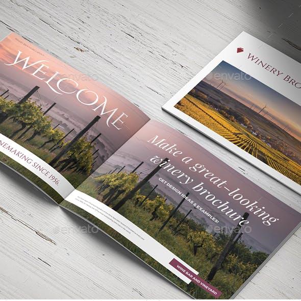 Vineyard & Winery Brochure