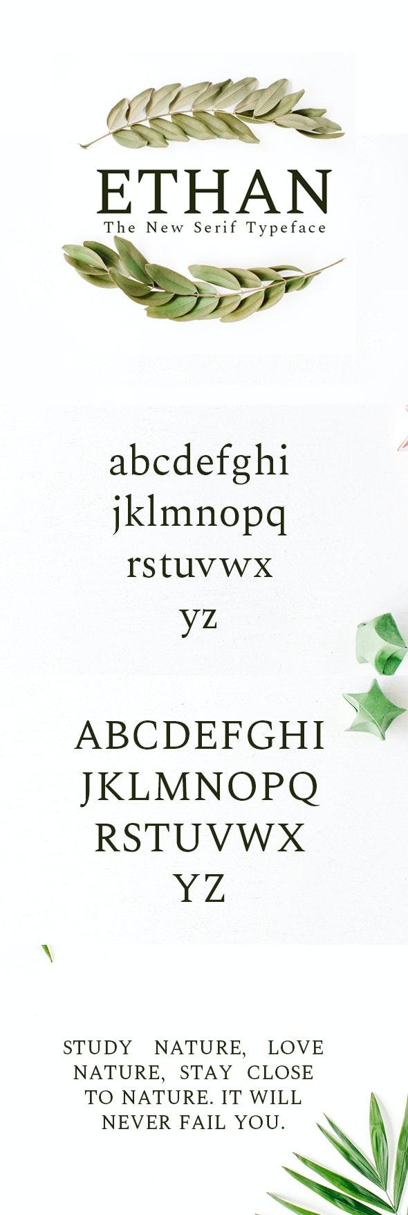 Ethan Serif 8 Font Family Pack - Serif Fonts