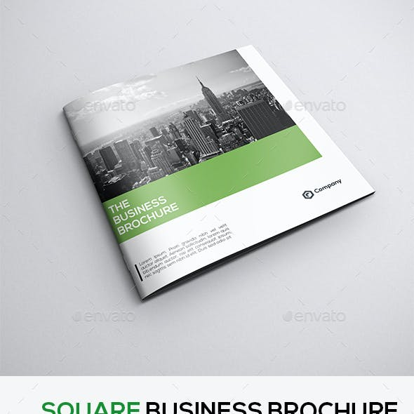 Square Clean Business Brochure