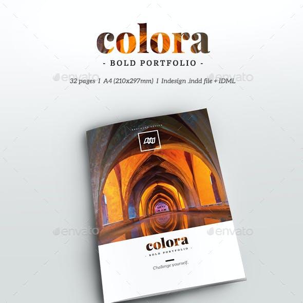 Colora - Bold, Clean Portfolio