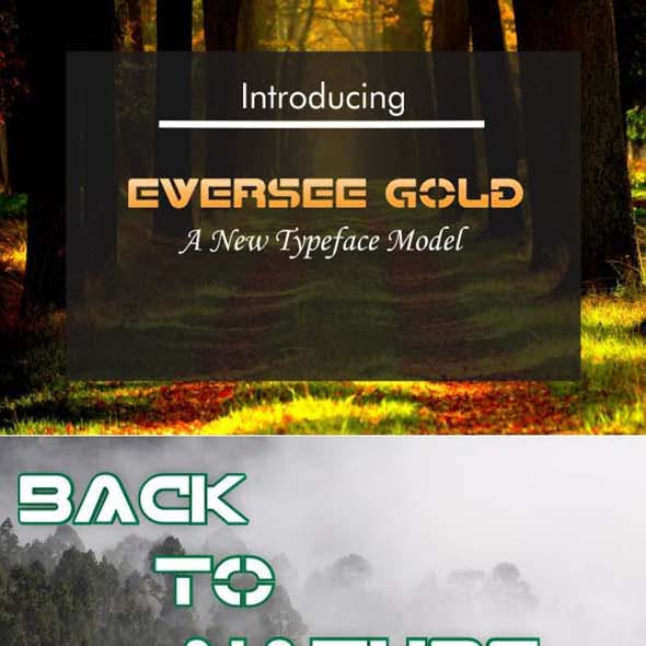 Eversee Gold Typeface