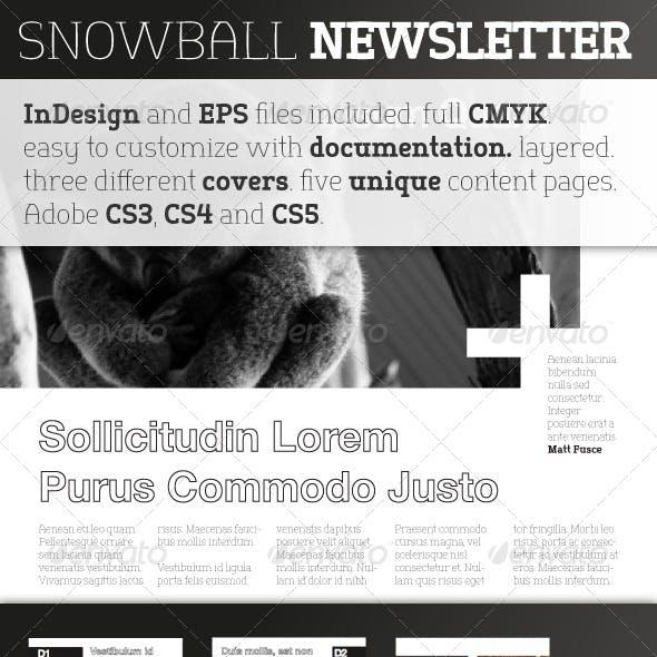 Snowball Newsletter Template