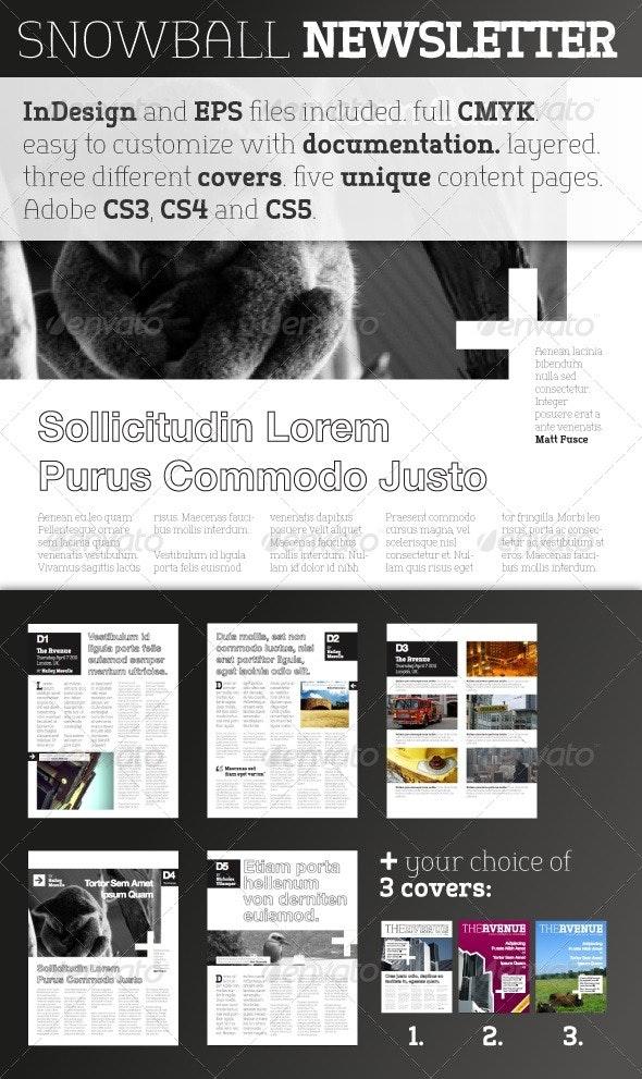 Snowball Newsletter Template - Newsletters Print Templates