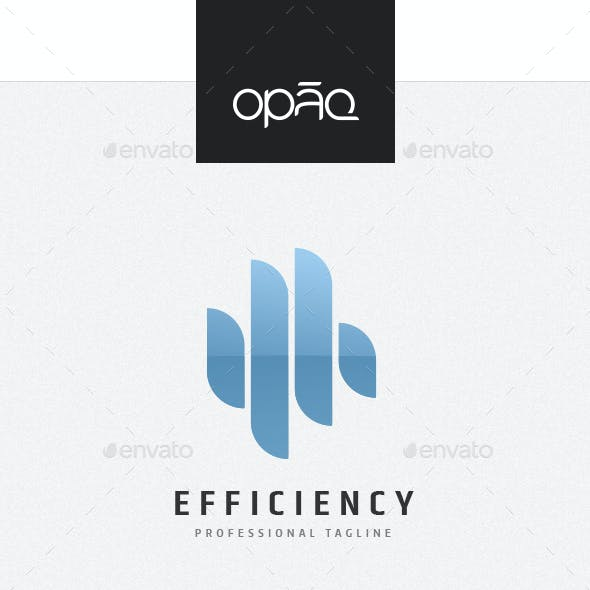 Capital Efficiency Investment Logo