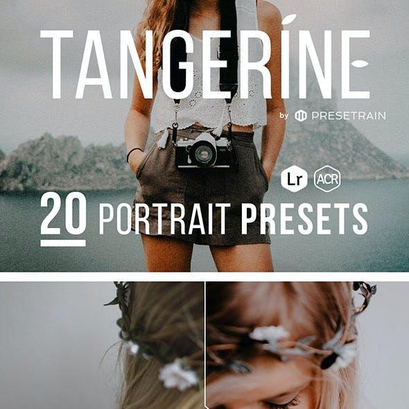 Tangerine - 20 Portrait Presets for Lightroom & ACR