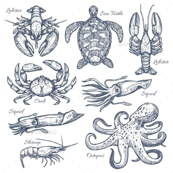 Sea Animals and Seafood Isolated Sketch Set