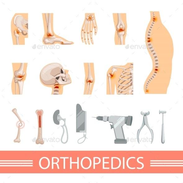 Orthopedic Icons Set. Human Skeleton, Bones