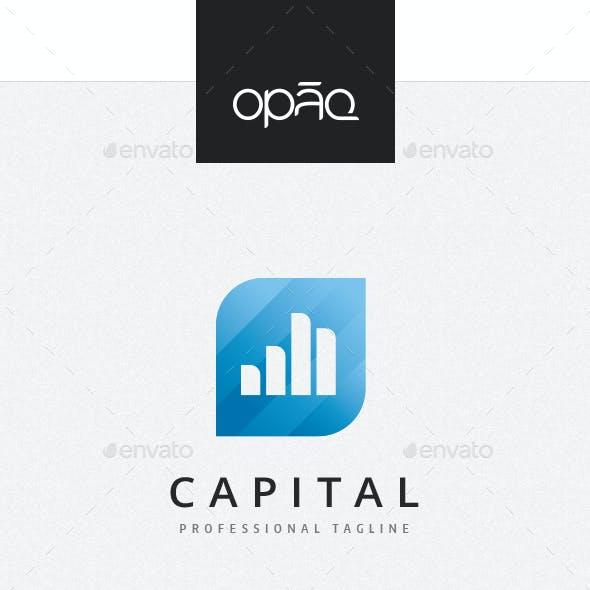Capital Gain Logo