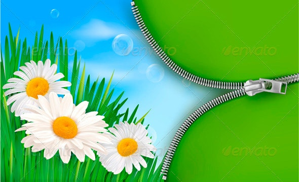Nature background with spring flowers - Flowers & Plants Nature