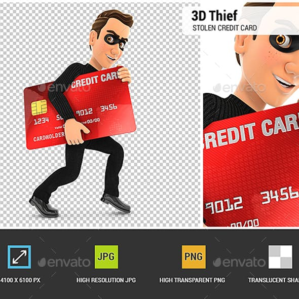 3D Thief with a Stolen Credit Card