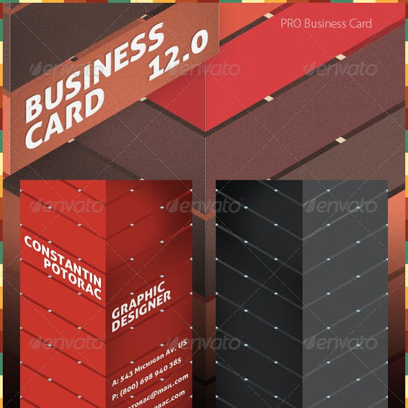 Pro Business Card 12.0