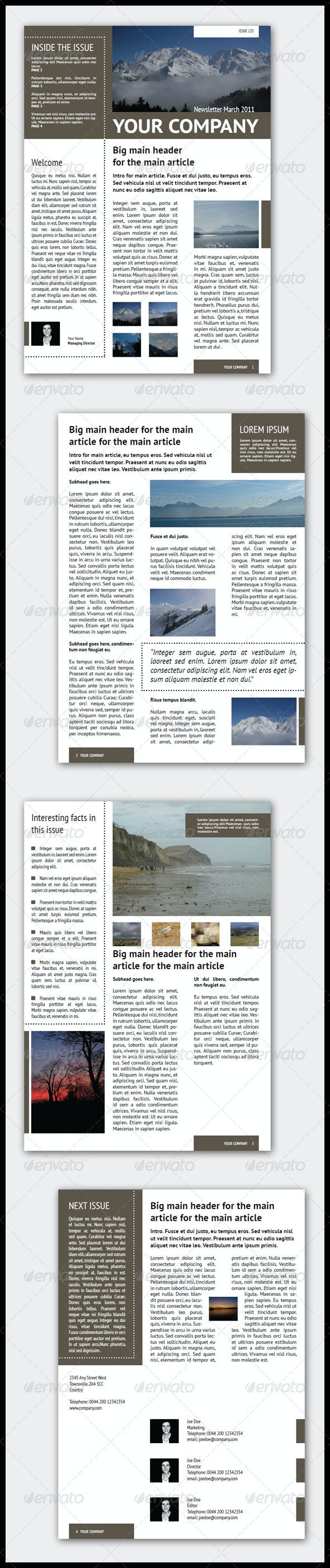 Newsletter Template (4 Pages – Adjustable)  - Newsletters Print Templates