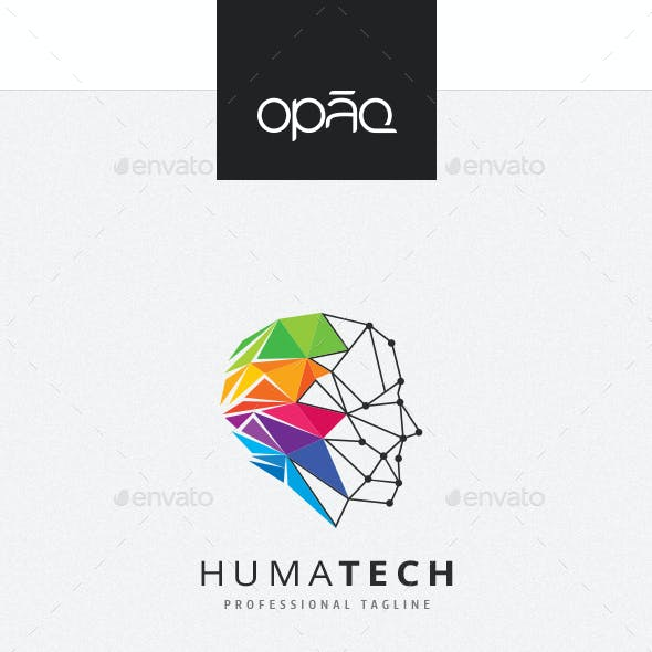 Human Colorful Triangulation Logo
