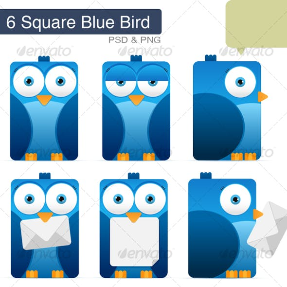 Square Blue Bird