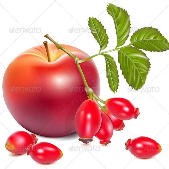 Red Ripe Apples and Rose Hips
