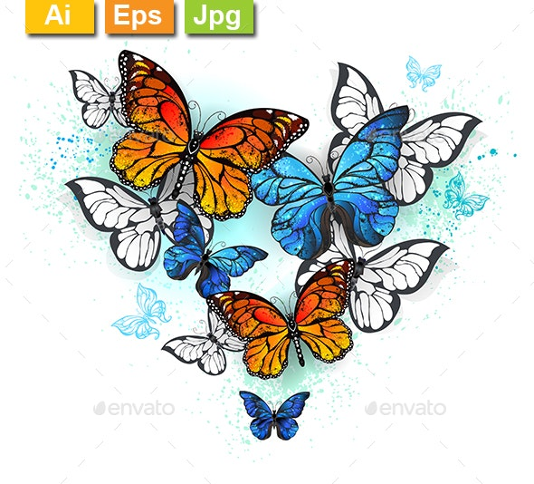 Morpho and Monarchs - Animals Characters