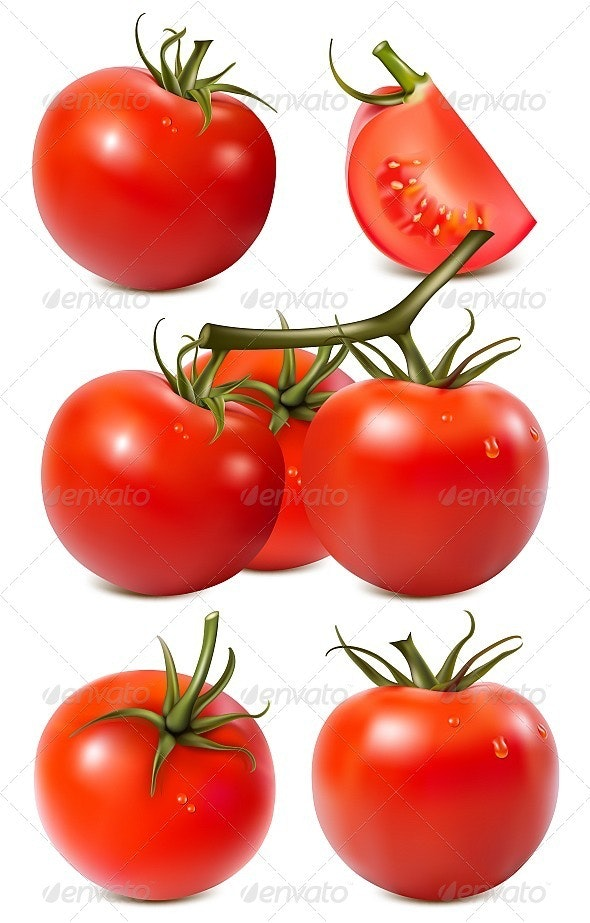 Vector Collection of Red Ripe Tomatoes - Food Objects