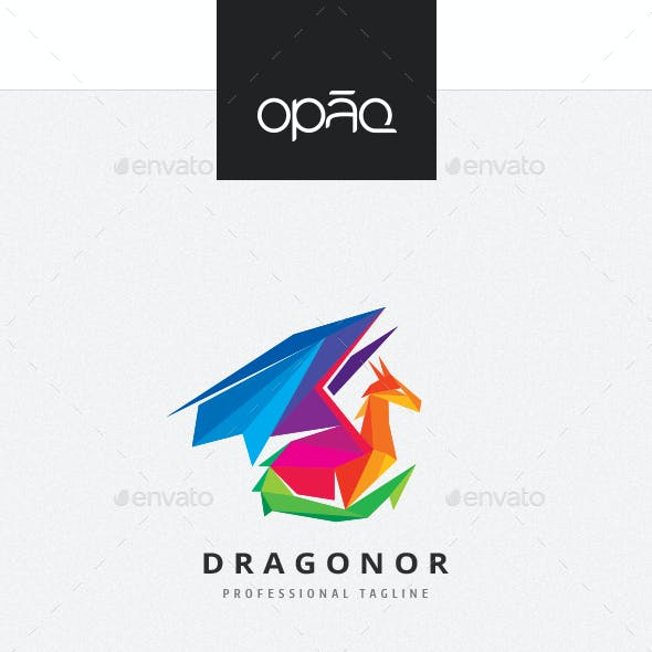 Dragon Colorful Polygon Logo