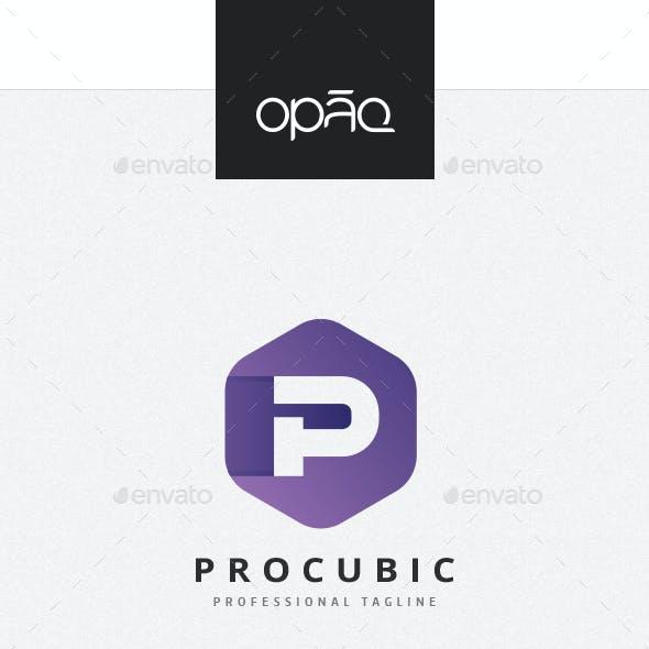 Cubical P Letter Logo