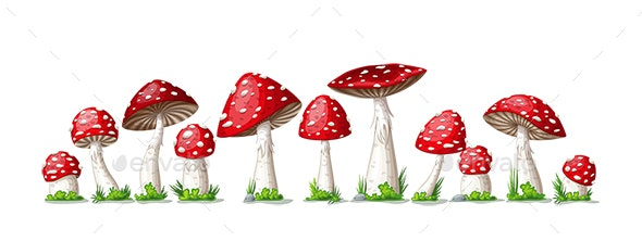 Illustration of Some Mushrooms - Organic Objects Objects