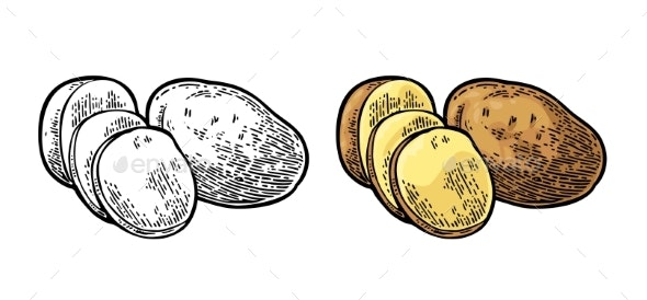 Potato Whole and Slice - Food Objects