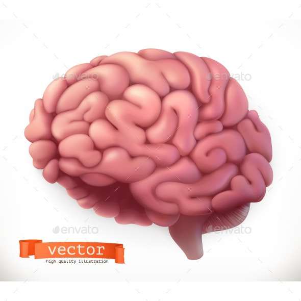 Brain Vector Icon - Organic Objects Objects