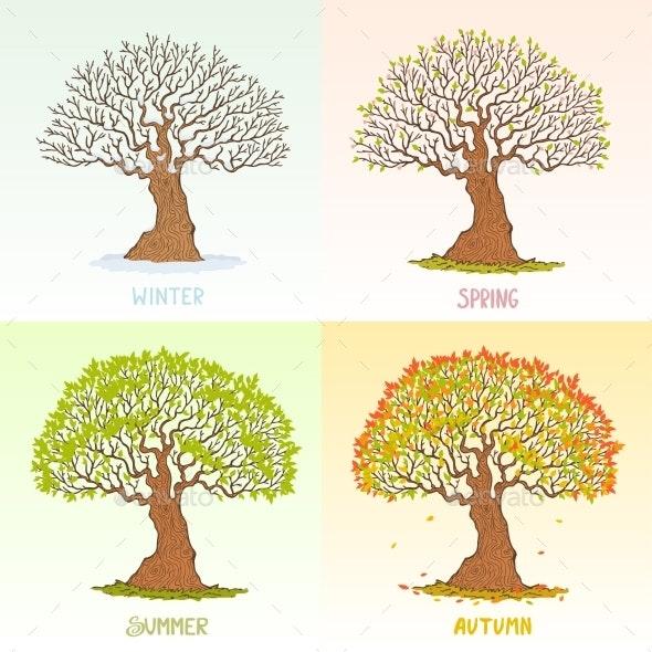 Tree Seasons - Seasons Nature