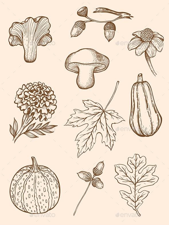 Autumn Design Kit - Flowers & Plants Nature