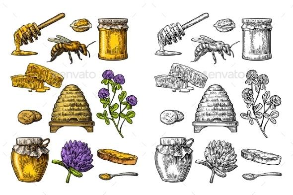 Honey Set - Flowers & Plants Nature
