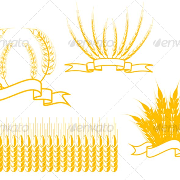 Cereal isolated on white as an agriculture symbols