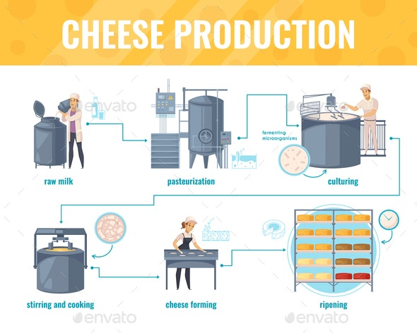 Cheese Production Cartoon Infographics - Food Objects