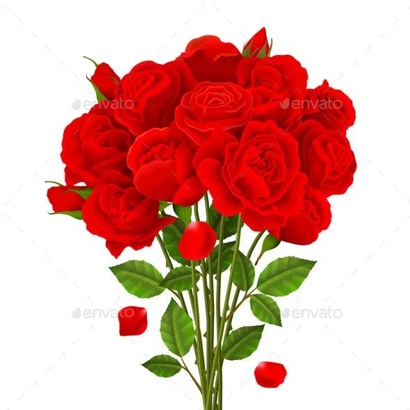 Rose Bouquet Illustration - Flowers & Plants Nature