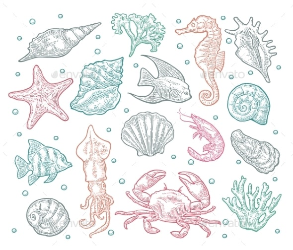 Seamless Pattern Sea Animal - Animals Characters
