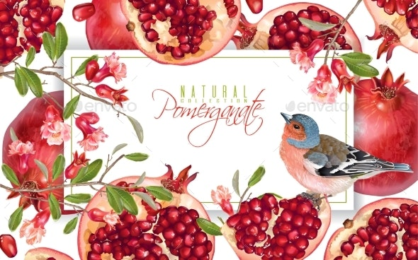 Pomegranate Branch Bird Banner - Food Objects