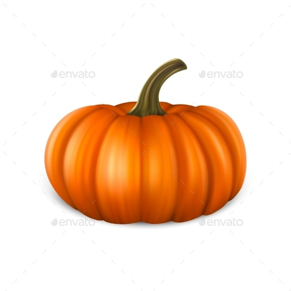 Realistic Pumpkin Icon Closeup Isolated on White - Food Objects