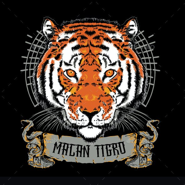Macan Tigro T-shirt Design