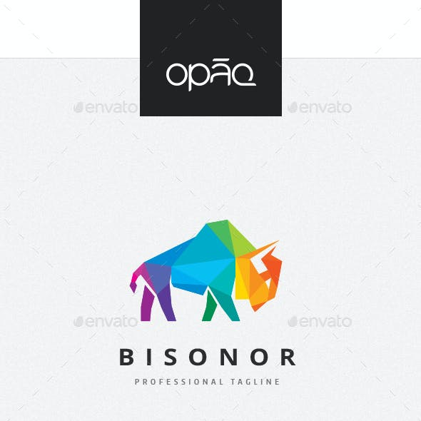 Bison Colorful Polygon Logo