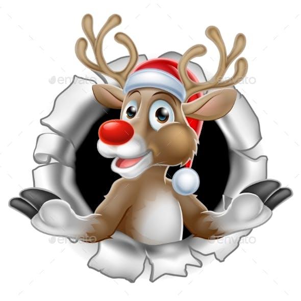 Santa Hat Reindeer Breaking Through Background
