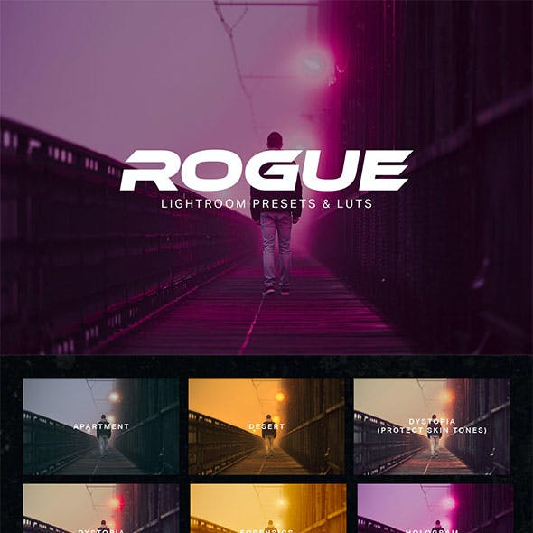 Rogue Lightroom Presets and LUTs