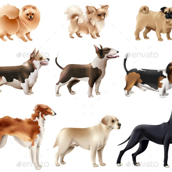 Dog Breeds Icon Set
